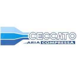 Головка Ceccato для компресора FC2/24CM2, FC2/50CM2 (6218739800), , 4146.00 грн, Головка Ceccato для компресора FC2/24CM2, FC2/50CM2 (6218739800), Ceccato, Наборы для компрессоров