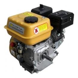 Двигатель FORTE F200G 2756.00 грн