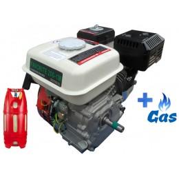 Бензо-газовый двигатель Iron Angel FAVORITE 200-1M LPG, , 1593862.00 грн, Бензо-газовый двигатель Iron Angel FAVORITE 200-1M LPG, Iron Angel, Бензо-газовые двигатели